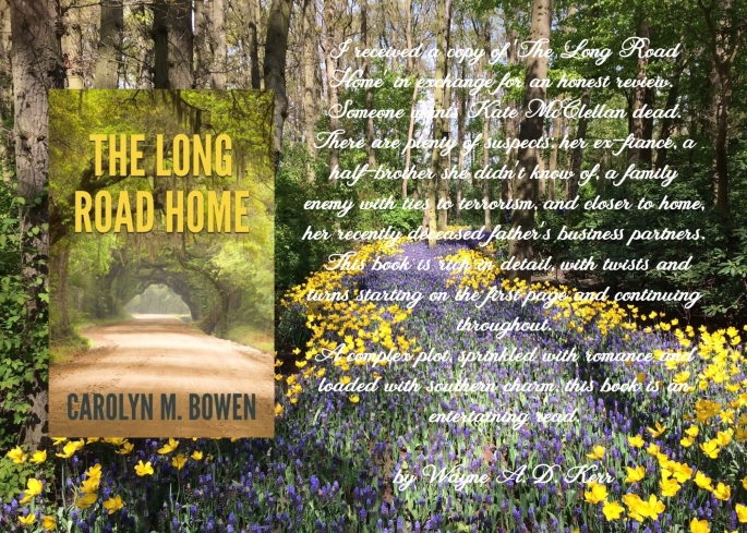 Carolyn long road home review.jpg