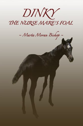Marta dinky the nurse mare's foal