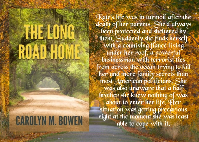 Carolyn long road home blurb