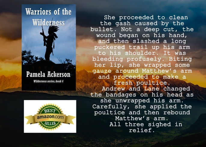 Pam warriors of the wilderness excerpt.jpg