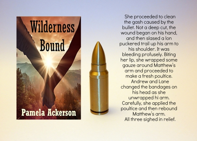 Pam wilderness bound excerpt.jpg