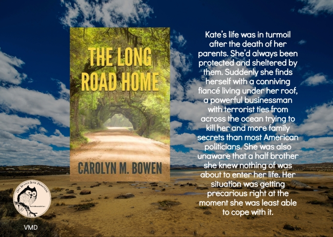 Carolyn long road home blurb 2.jpg